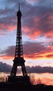 PARIS 展示 書作品 丸山茜葉 フランス